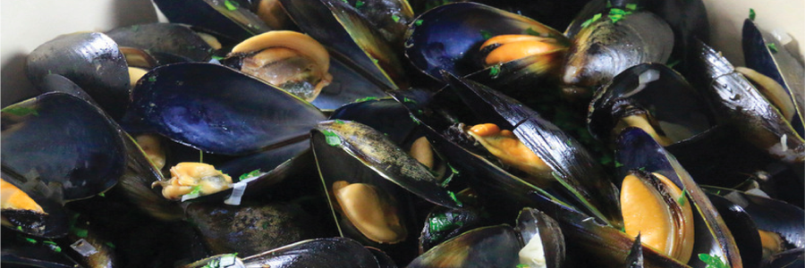 Moules-frites Bistro